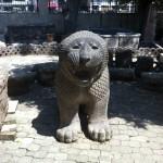 Tayinat Lion