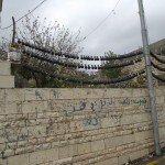 tear gas canisters as decoration, Nabi Saleh, Palestine